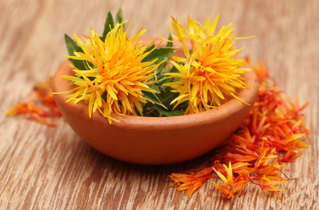 Herbal medicines are effective for seizure disorders: Review